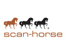 Scan Horse